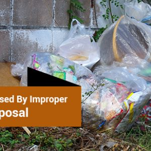 Sickness Caused By Improper Garbage Disposal