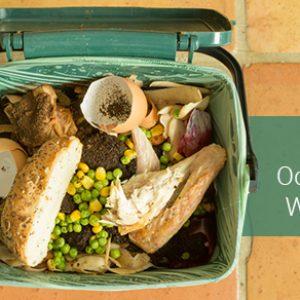 Eliminate Odour From Waste Bins