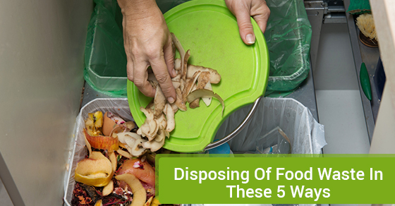 Disposing Of Food Waste In These 5 Ways