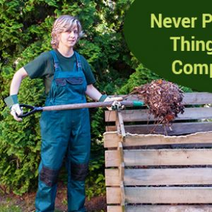 Never Put These 5 Things Into A Compost Bin