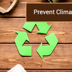 Prevent Climate Change