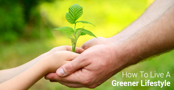 8 Tips For A Greener Lifestyle