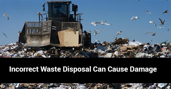 Damage Caused By Improper Waste Disposal