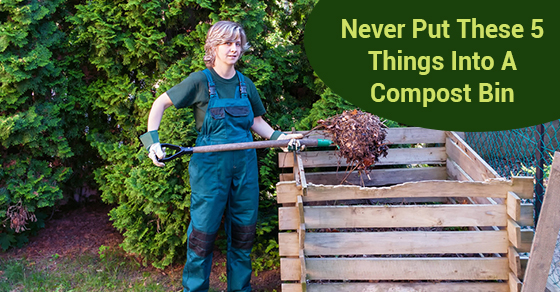 5 Items That Do Not Belong In The Compost Bin