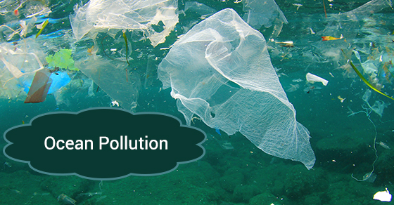 How Does Garbage End Up In The Ocean?