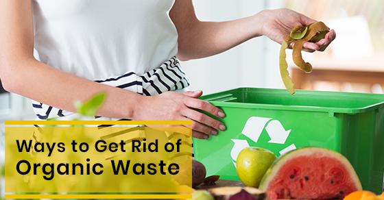 Ways to Get Rid of Organic Waste