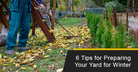 6 Tips for Preparing Your Yard for Winter
